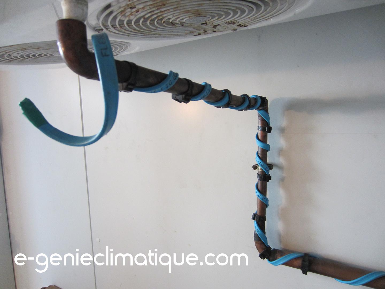 Chambre froide n gative les cordons chauffants avec flexelec e - Schema electrique chambre froide ...